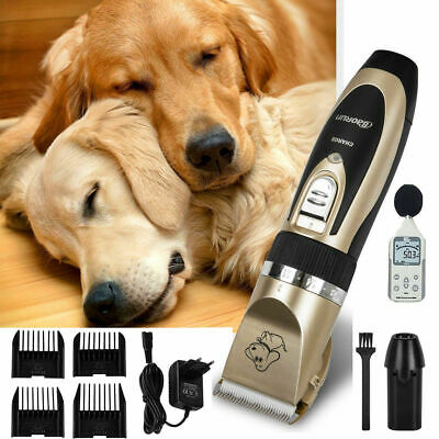 Tondeuse Chien Chat Animal Électrique sans Fil Rechargeable Toilettage Animal