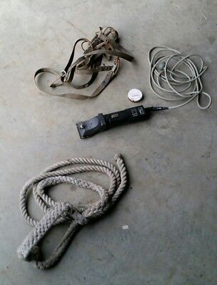 Hauptner horse clippers old bridle and lead