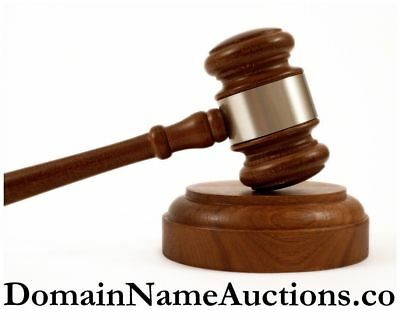 DomainNameAuctions .co Domain Name Auctions Auction Indexed Niche Godaddy