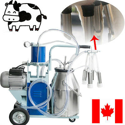 Canada Electric Milking Machine Vacuum Piston Pump Milker For Farm Cow Cattle SS