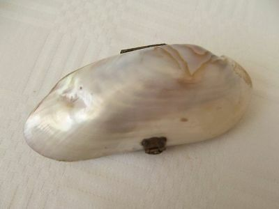 Antique/vintage Mother Of Pearl Shell Coin Purse