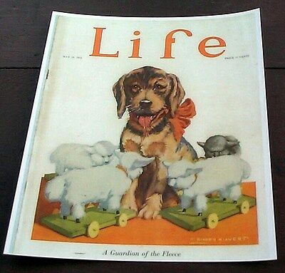 Dog Puppy Toy Sheep Lamb Steiff 1922 Life Magazine Cover Reprint