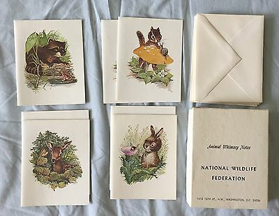 Vintage Mid Century National Wildlife Federation 7 NOTE CARDS Box Maurice Day