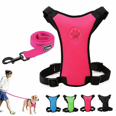 Soft Padded Breathable Air Mesh Dog Car Harness & Leash Paw Print for Dog Travel