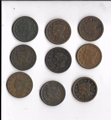 Lot Of 9 Large One Cents Various Dates