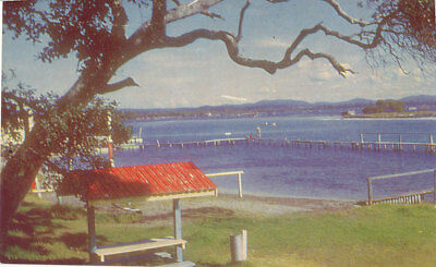 "FORSTER, NSW,    Postcard of ""LAKE SWIMMING POOL"".. C A PITT."