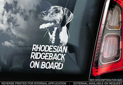 Rhodesian Ridgeback - Car Window Sticker - Dog Sign -V01