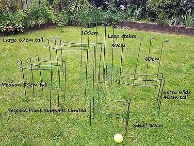 Metal Plant Supports and Stakes various sizes/designs 6mm mild steel (will rust)