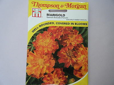 Seed T&m Flower  Marigold Spanish Brocade 9French) Seeds Rrp £2.69