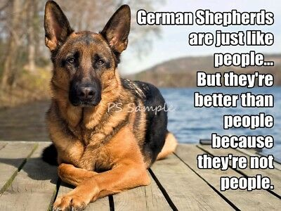 GERMAN SHEPHERD Better Than People  Funny Magnet 4 x 3 inches