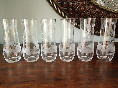 6 Vintage Engraved Wildlife Drinking Glasses / Tumblers Etched Animals Signed