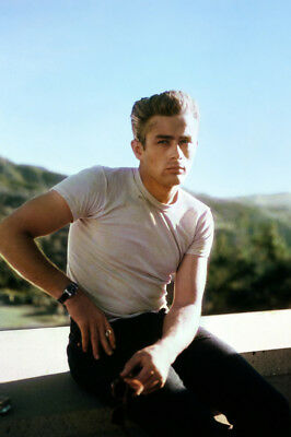 Rebel Without a Cause James Dean in white t-shirt Griffith Park 24x36 Poster