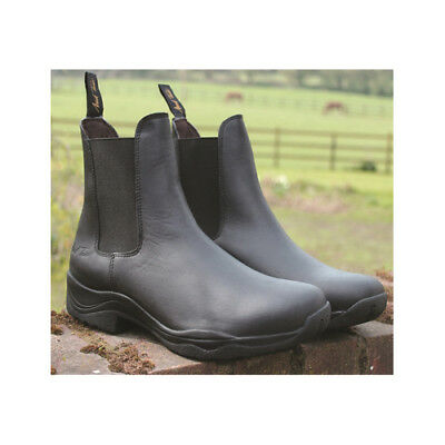 Mark Todd Tasman Jodhpur Boot Adult