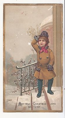May True Christmas Joys Be Thine Boy on Steps of House  Vict Card c 1880s