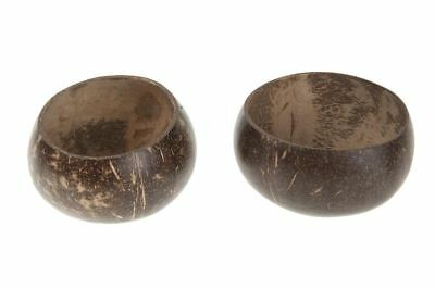 Natural Polished Coconut - Half Open Top - Natural Craft and Interiors