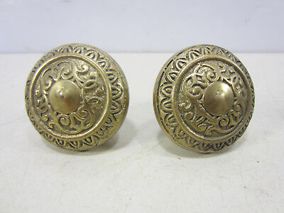 Heavy Brass Egg & Dart Pattern Door Knobs