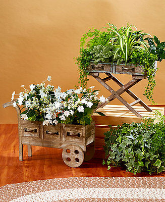 Rustic Primitive Plant Holders Planters Tray Wheeled Cart Country Farmhouse Gift