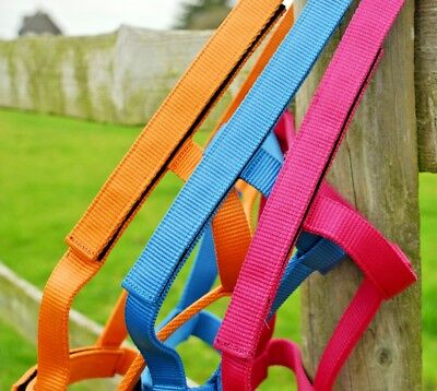 Rhinegold Field Safe Headcollar Metal Free Head Collar Fieldsafe & New Colours