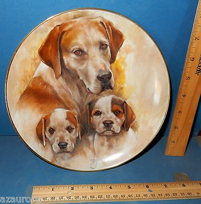 KERN POINTER DOG MY FAVORITE PETS SERIES 1983 LTD ED COLLECTOR PLATE coonhound?