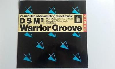 Dsm - Warrior Groove (Remix)