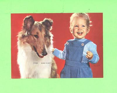 Vintage Calendar Image Little Boy With Nice Dog Coley