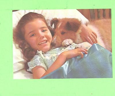 Vintage Calendar Image Little Girl With Nice Dog Coley
