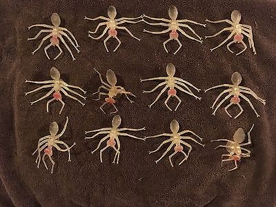 12 New Latex Rubber Giant Ant Glow In The Dark Insects Halloween Creepy Props
