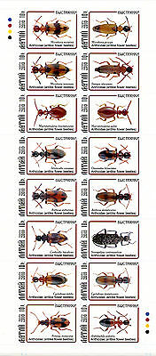 Altay 2010 6 Sheets Collection Beetles Insects Escarabajos Kafern Besouros