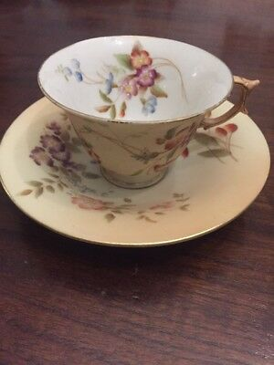 Rare Vintage Or Antique Royal Worcester Blush Ivory Cup And Saucer Hand Painted