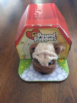 2004 Pound Puppies Bull Dog- G3799- In Original Sealed Packaging