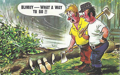 Vintage 1970's Bamforth COMIC Postcard (as new condition) What a way to go #444