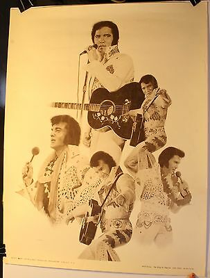 """Vintage 1979 Elvis Presley The King by Chaplan 20 X 26"""" Litho Print Poster #727"""