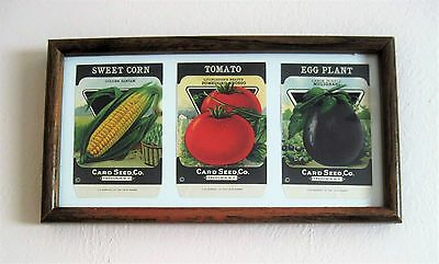 Framed 1920 Seed Packets CORN, TOMATO, & EGGPLANT, COLORFUL KITCHEN ART