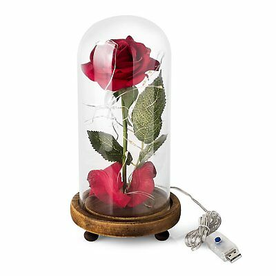 Beauty And The Beast Enchanted Rose Glass Dome Home Office Deco Wedding Gift LED