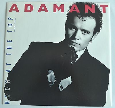 """Adam Ant / the  Ants 12"""" Room at the Top UK House Vocal New"""