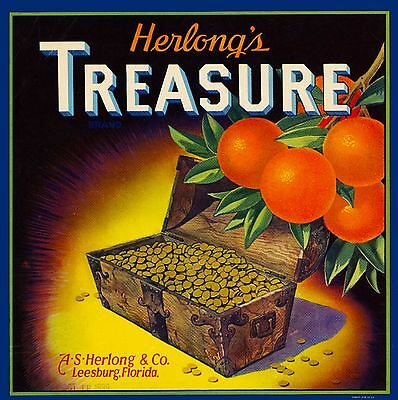 Leesburg Florida Herlong's Treasure Brand Orange Citrus Fruit Crate Label Print