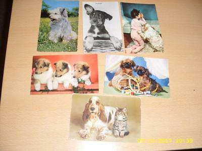 Dogs - Collection Of Vintage   Postcards