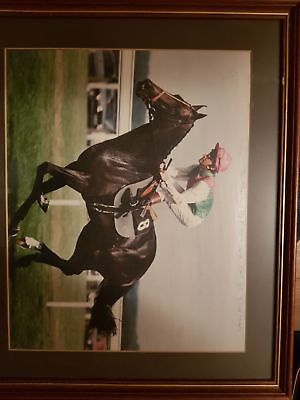 Pat Eddery Hand Signed 17x14 Photo Horse Racing Legend 1.