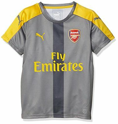 Puma Afc Maillot Garçon Steel Gray/Spectra Yellow FR : 10 ans (Taille Fabricant
