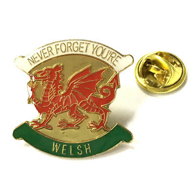 Wales Never Forget You're Welsh Metal Pin Badge [sr]