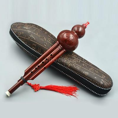Chinese Hulusi Resin Gourd Cucurbit Flute Key of C with Case for Beginner Q1O9