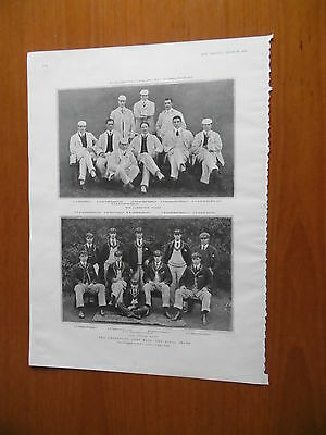 1904 The Graphic Oxford Cambridge University Boat Race Crews