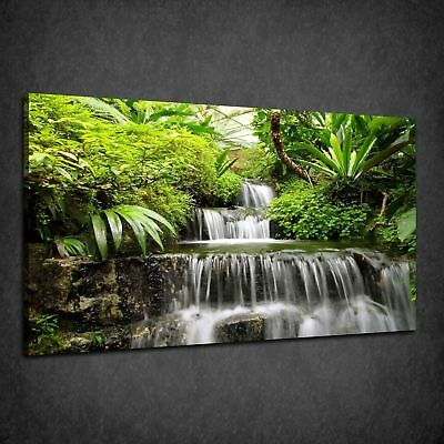 Beautiful Rainforest Waterfall Green Nature Box Canvas Print Wall Art Picture