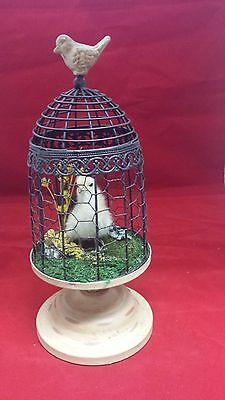 SALE*Taxidermy Baby Chick in Fancy koop-decorative metal!  chicken/country/bird