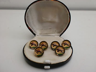 Vintage 1920's Set of 6 Equestrian Horse Riding Hunting Buttons Glass & Enamel