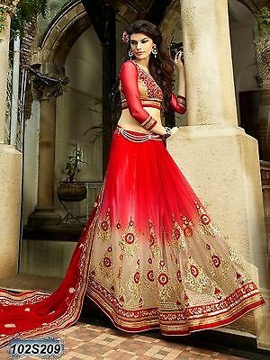 Bollywood Indian/pakistani Ethnic Designer Saree  In Red In Georgette And Net