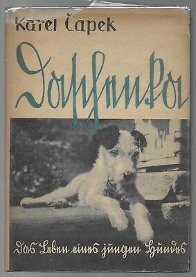 Daschenka Life Of A Young Dog Wire Hair Fox Terrier German Language c.1934 Illus