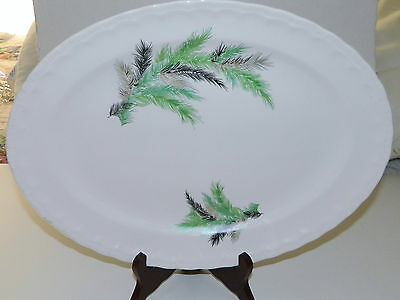 "Pope Gosser Oval Meat / Serving Platter Rare ""Palm Springs"" Pattern Made in USA"