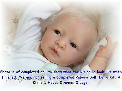 Reborn Doll Kit, Daniel By Linde Scherer, Vinyl Doll Kit, New