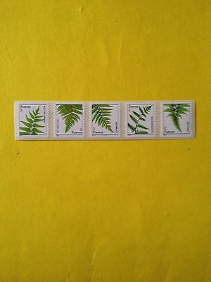 PNC5 US Ferns Forever #4874-78 Plate #C1111, W/Back#